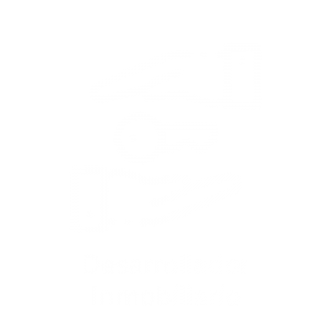 icono 1b
